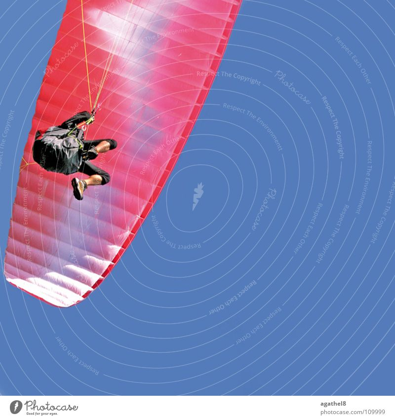 high achiever Paragliding Pink Glide Funsport Blue Sky Beautiful weather Flying Aviation
