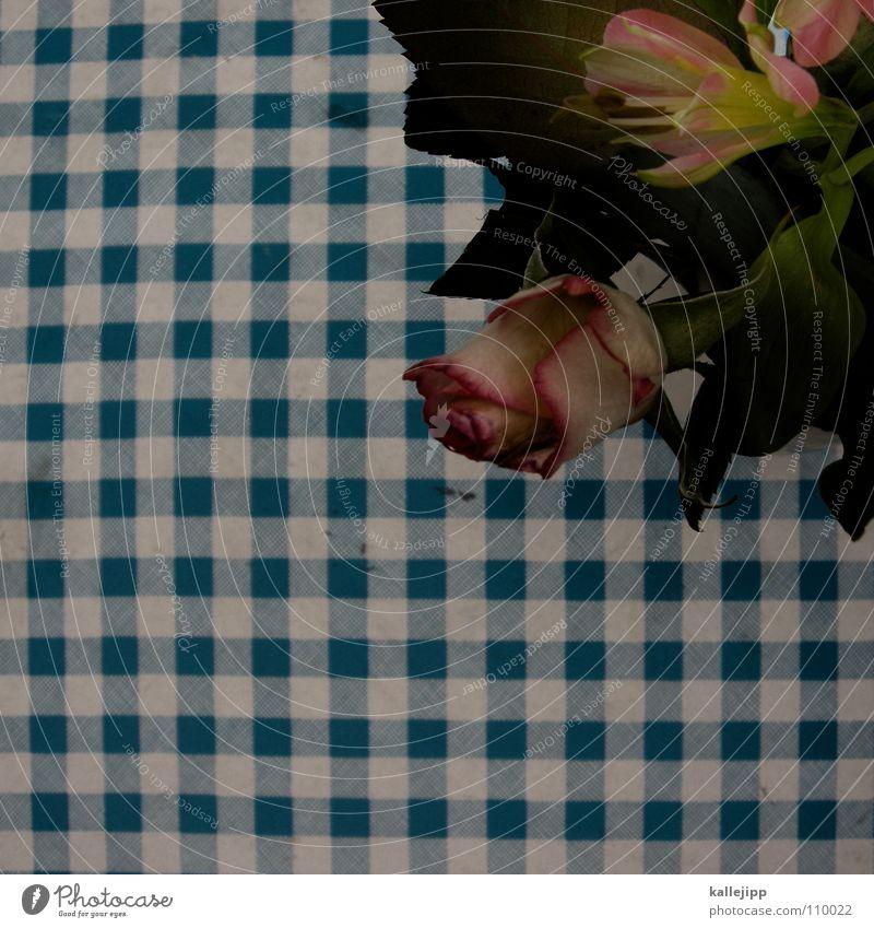 Blue White Flower Autumn Orange Pink Table Decoration Rose Café Restaurant Blanket Checkered Agree Embellish
