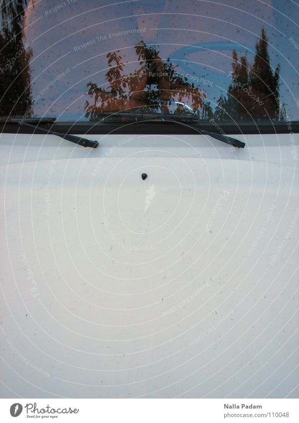 White Car Car Window GDR Vehicle Parking Mirror image Partially visible Section of image Modest Trabbi Windscreen Car Hood Windscreen wiper Two-stroke engine