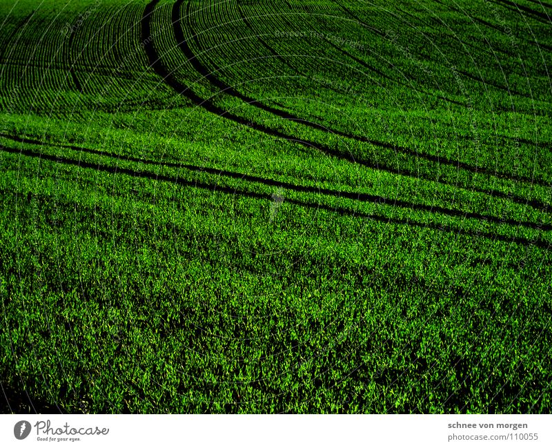 Green Black Autumn Grass Field Circle Gastronomy Agriculture Furrow