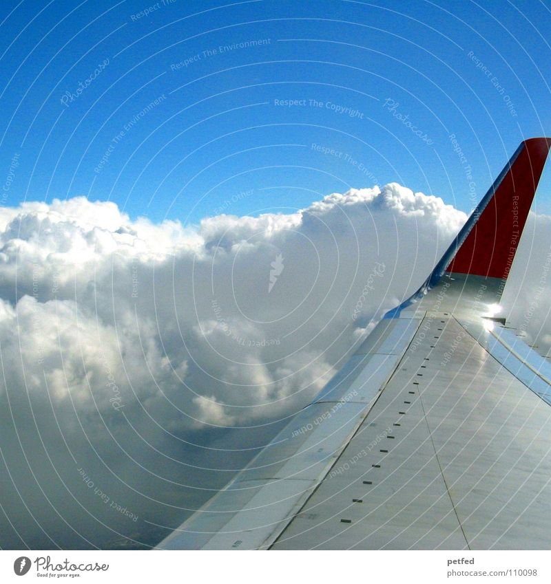 On my way to America Airplane Clouds Hover Vacation & Travel White Red Americas Aviation Airport Sky Tall Wing Earth Blue USA