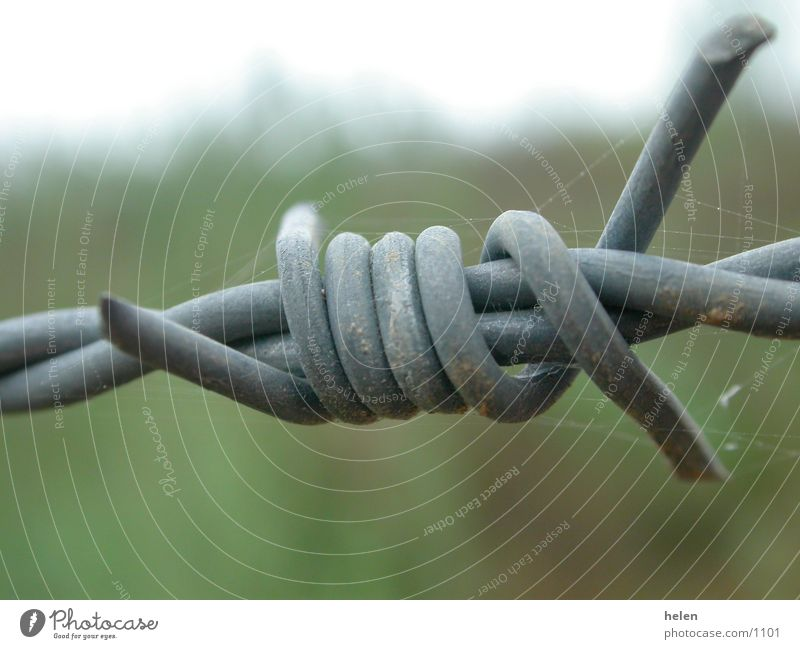 Things Barbed wire