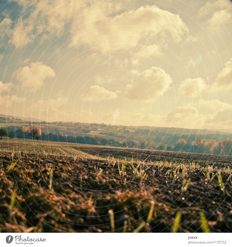 Sky Clouds Autumn Landscape Field Earth Transience Agriculture Harvest Sowing Stopper Seeds