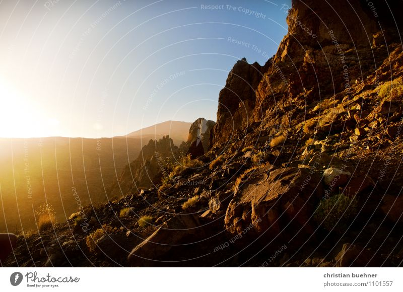 Teide - Tenerife Nature Landscape Earth Sky Cloudless sky Sunlight Summer Beautiful weather Hill Rock Mountain Volcano Esthetic Friendliness Gigantic Dry Wild
