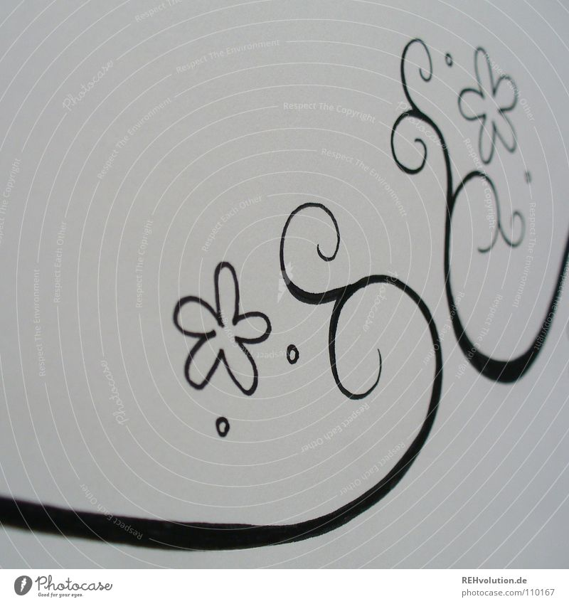 floret ring Black White Conceptual design Painting and drawing (object) Circle Curved Growth Tendril Delicate Fine Spirited Near Pen Paper Block Flower Blossom