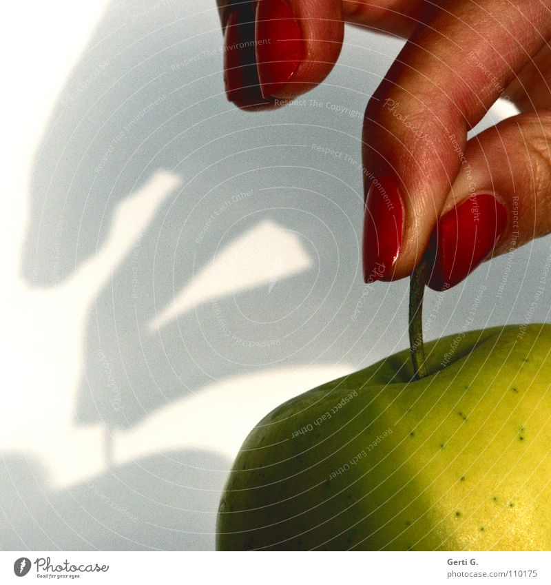 Human being Red Nutrition Food Brown Fruit Skin Fingers Sweet Point Image Logistics Apple To hold on Touch Stalk