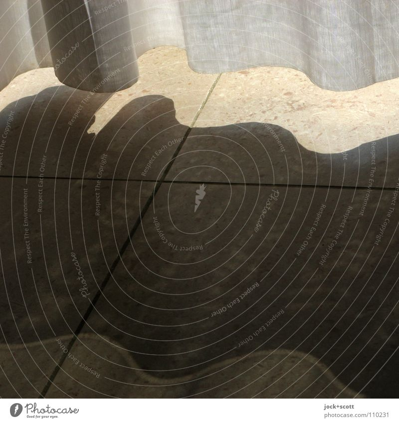 Vacation & Travel Summer Warmth Interior design Line Elegant Waves Living or residing Decoration Modern Climate Clean Protection Safety Tile Border