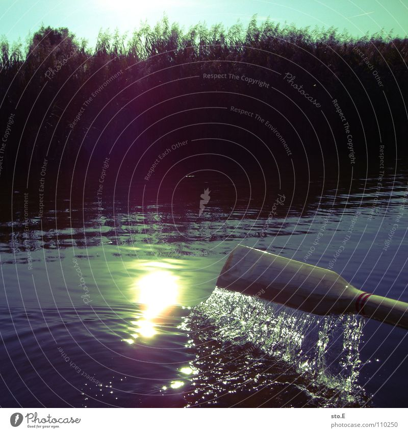 Nature Water Sun Calm Coast Lake Watercraft Leisure and hobbies Fishing (Angle) East Angler Rowboat Fishing rod Afternoon Lens flare Paddle