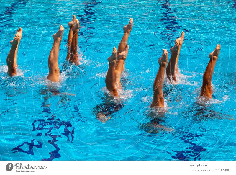 Synchronized swimming Lifestyle Swimming pool Dance Sports Sports team Dive Girl Woman Adults Feet Drop Breathe Fitness Swimming & Bathing Playing Wet Blue