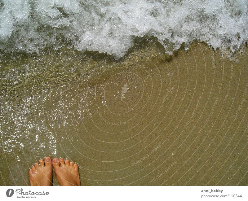 Feel the sea Summer Beach Ocean Waves Inject White Foam Toes Brown Emotions Wet Vacation & Travel Coast Water Sand Feet reflection sun wave splash foot toe toot