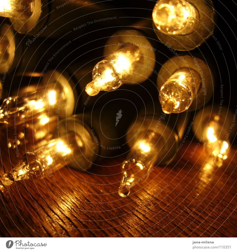 light in the dark Light Fairy lights Christmas Fair Electric bulb Glow Illuminate Lighting Anticipation Physics December Glittering Office party Dark Bright