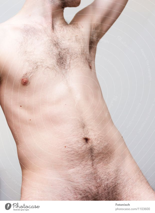 Hollywood Cut - No Thanks Human being Masculine Young man Youth (Young adults) Man Adults Body Stomach Pubic area Upper body 1 18 - 30 years Hair Hairy chest