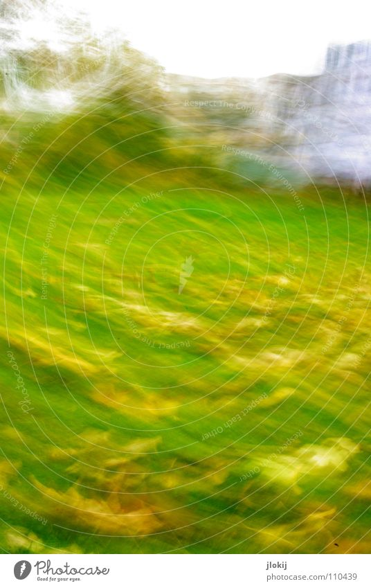 *wipeswipe* Meadow Leaf Grass House (Residential Structure) Park Autumn Tree Blur Window Facade Waves Short Garden Movement Oak tree Lawn motion blur