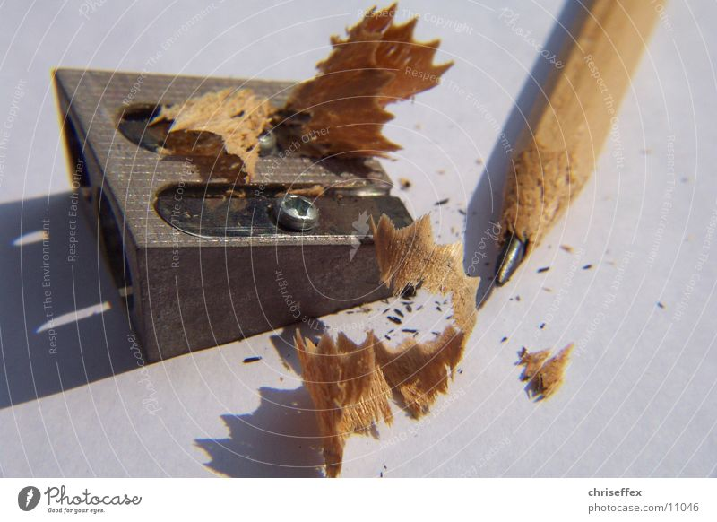 White Wood Brown Point Painting (action, work) Things Draw Pencil Sharpener