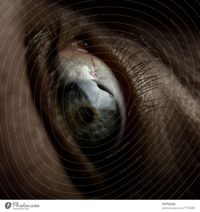 trust? Scream Fear Panic Vessel Stringer Emotions Near Escape Tear open Pupil Eyelash Eyebrow Organ Senses Freckles Pore Optician Man Living thing siggi