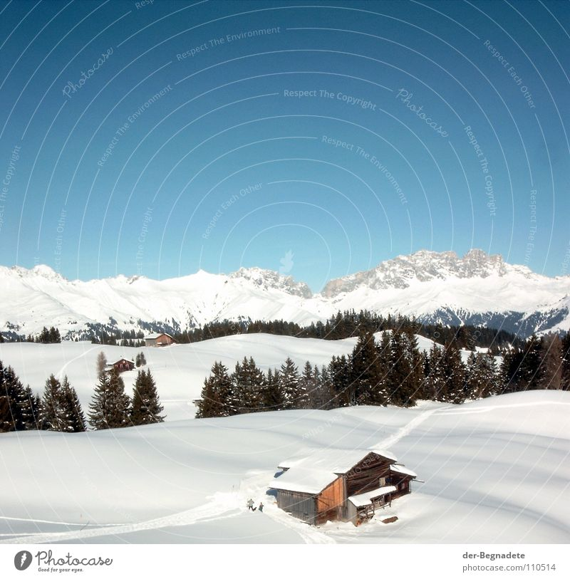 Mountain idyll II Winter February Cold Virgin snow Winter vacation Snow hiking Canton Graubünden Switzerland White Snowdrift Wooden hut Alpine hut Roof Brown