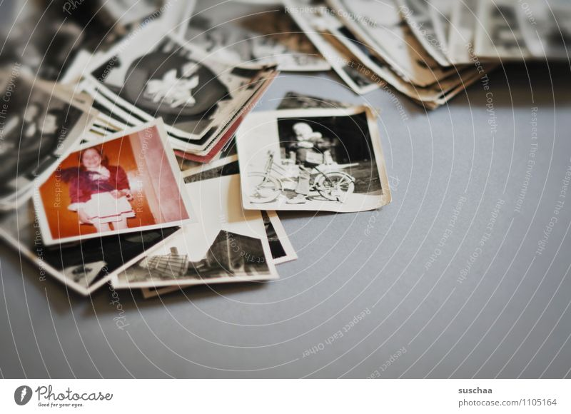 rummage in the past ... Paper Old Emotions Photography Accumulation Sentimental Memory Child Analog Subdued colour Interior shot Copy Space right