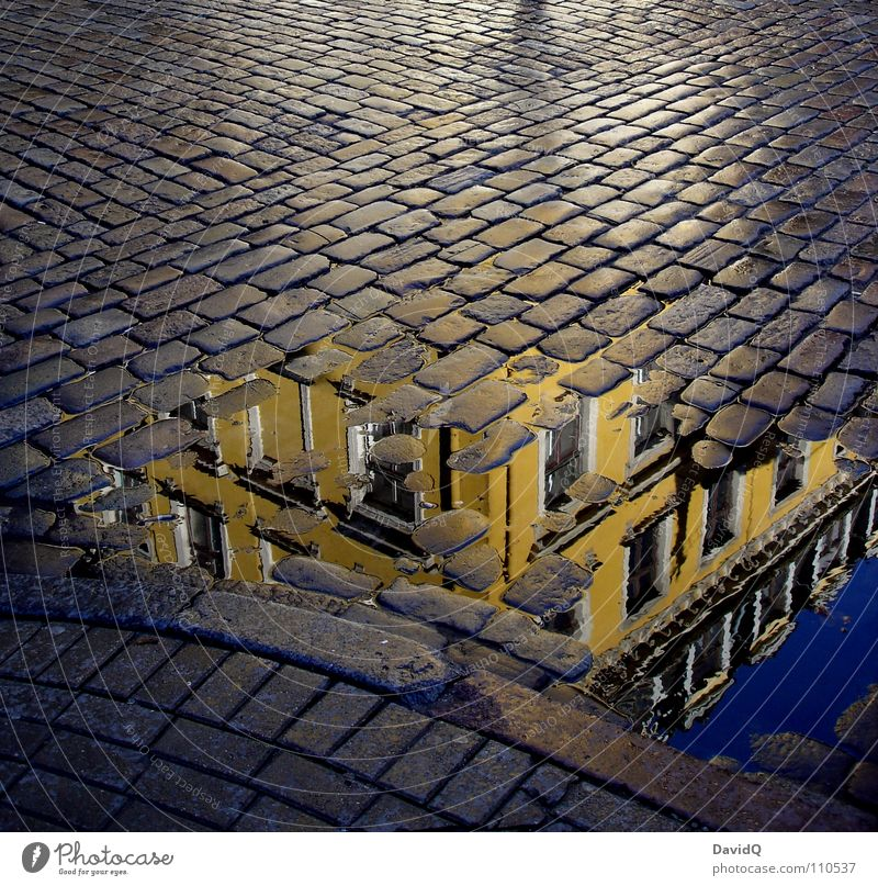 City Blue House (Residential Structure) Yellow Street Gray Facade Traffic infrastructure Old town Cobblestones Paving stone Puddle Mixture Curbside