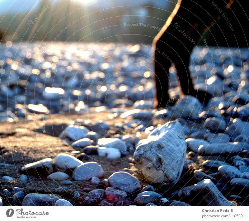 Sun Calm Life Autumn Dog Stone Sand Grief River Distress Brook Gravel Minerals Shaft of light Sunset