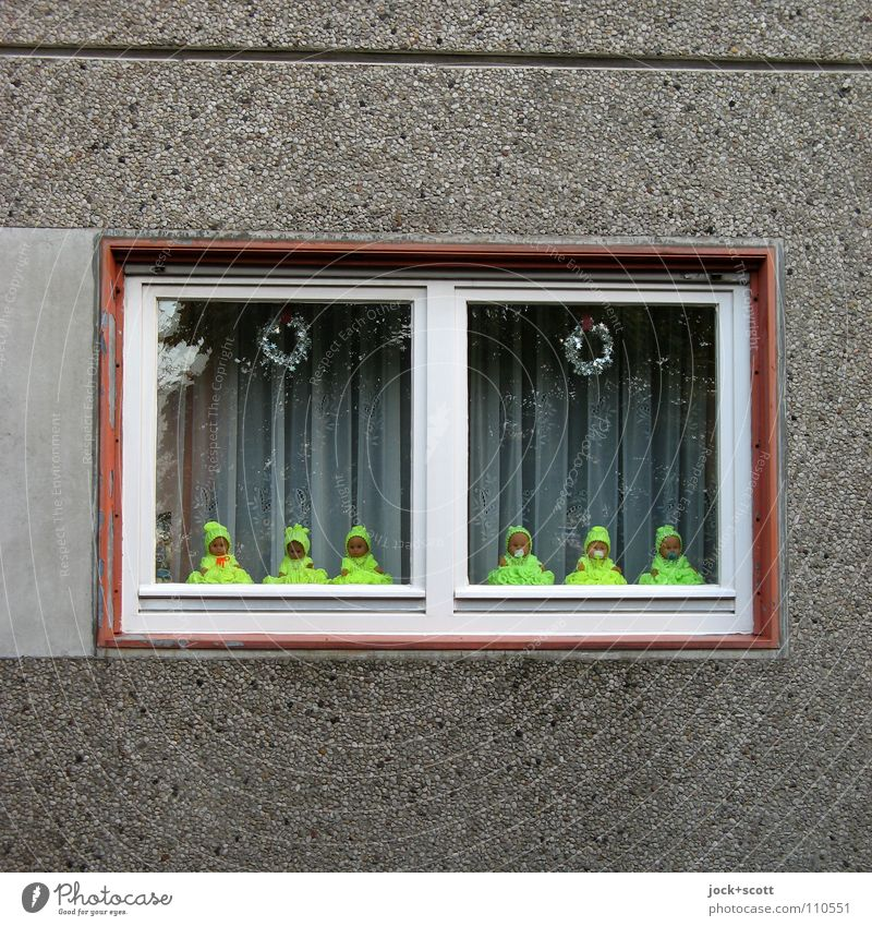 Baby Love (forward) Living or residing Decoration Architecture Wall (building) Facade Window Toys Doll Collection Concrete Baby doll Kitsch Small Funny Crazy