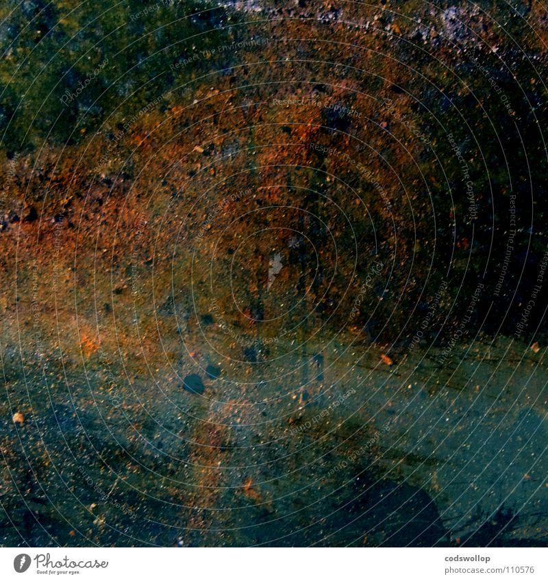 L'automne - Bords de l'Elbe près de Hambourg Rust Autumn Art Oxydation Painting and drawing (object) Tree Culture impressionist oil painting paul Édouard