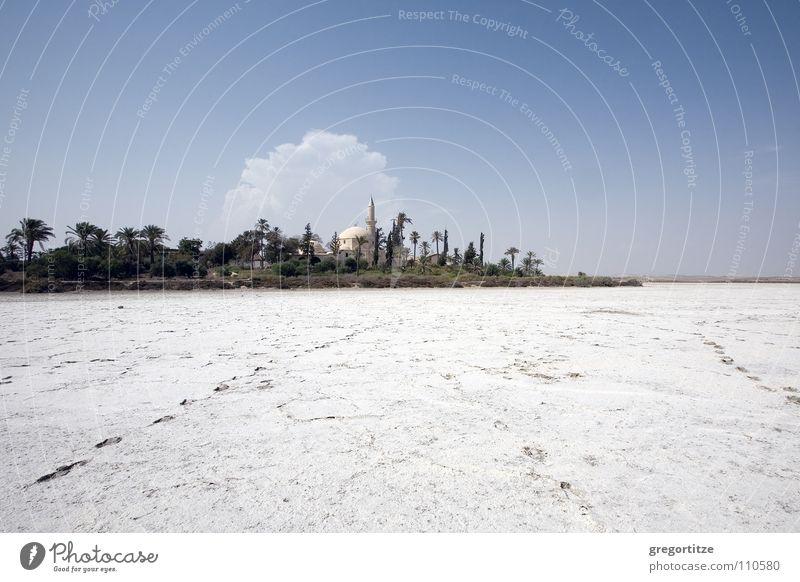 Sky Clouds Stone Palm tree Lake Minerals Mosque House of worship Cyprus Salt  lake Salt Lake