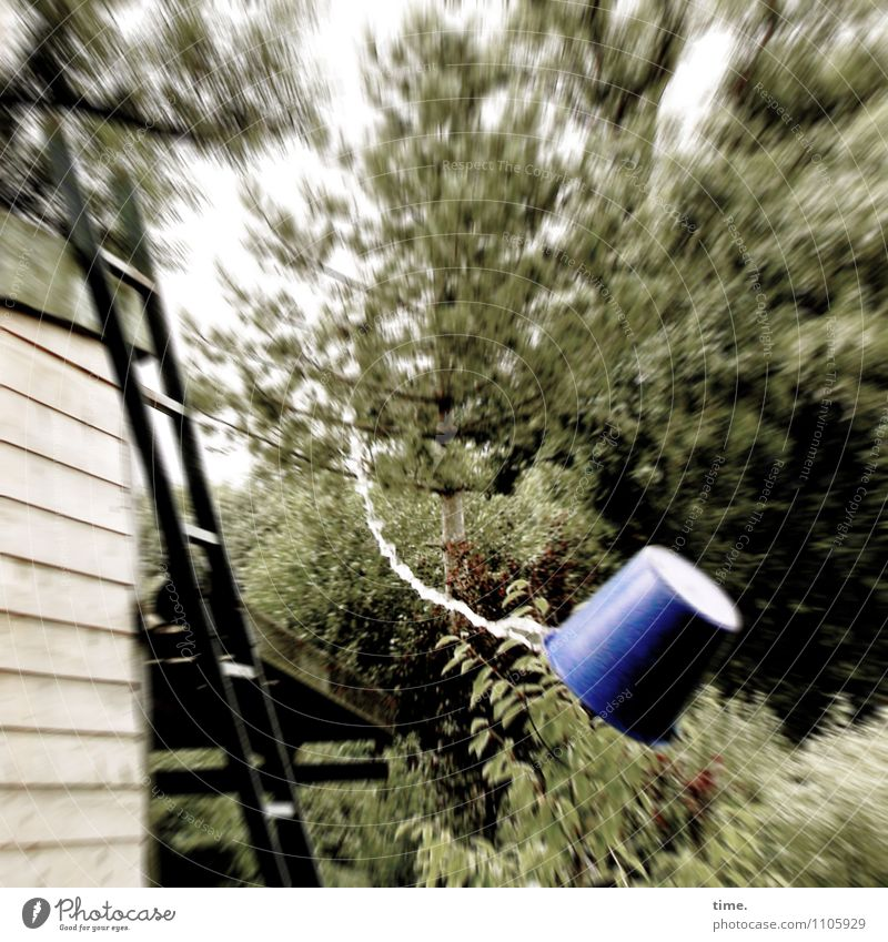Watermark | Trouble in the allotment garden Bucket Ladder Environment Nature Landscape Drops of water Tree Garden Hut Manmade structures Gardenhouse Flying