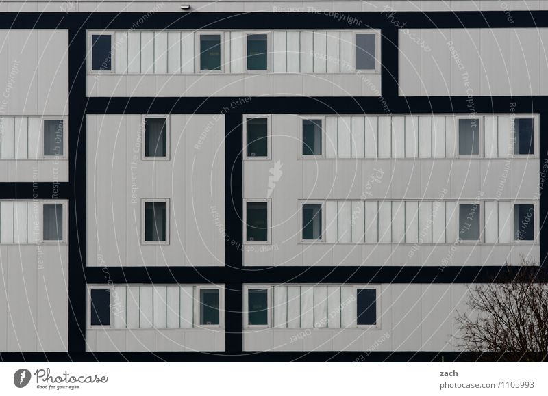 City Plant Tree Loneliness House (Residential Structure) Window Wall (building) Architecture Wall (barrier) Berlin Gray Line Facade Living or residing High-rise Bushes