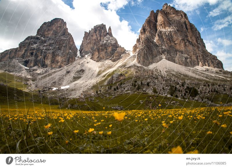 hiking time Vacation & Travel Tourism Trip Adventure Summer Summer vacation Mountain Nature Landscape Plant Sky Clouds Spring Beautiful weather Flower meadow