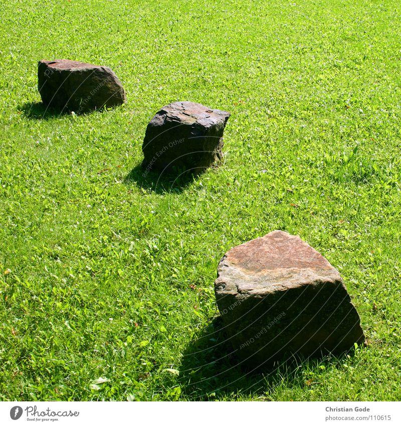 Green Meadow Garden Stone Park Brown Lawn Things Schoolyard