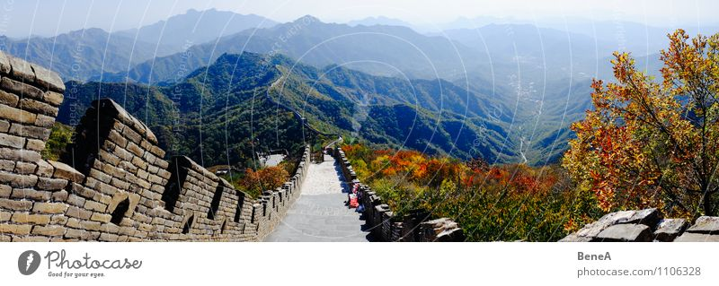 Great Wall Vacation & Travel Far-off places Sightseeing Architecture Autumn Beautiful weather Tree Hill Mountain Deserted Manmade structures Building
