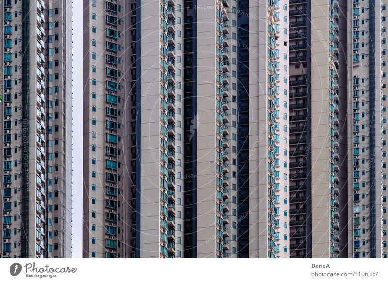 Hong Kong Walls Living or residing Flat (apartment) House (Residential Structure) Hongkong China Asia Town Capital city Downtown Skyline Overpopulated High-rise