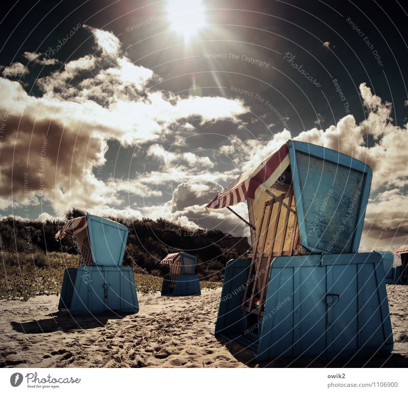 SHADOW BOXES Vacation & Travel Tourism Environment Landscape Sky Clouds Horizon Sun Summer Climate Weather Beautiful weather Warmth Forest Coast Beach