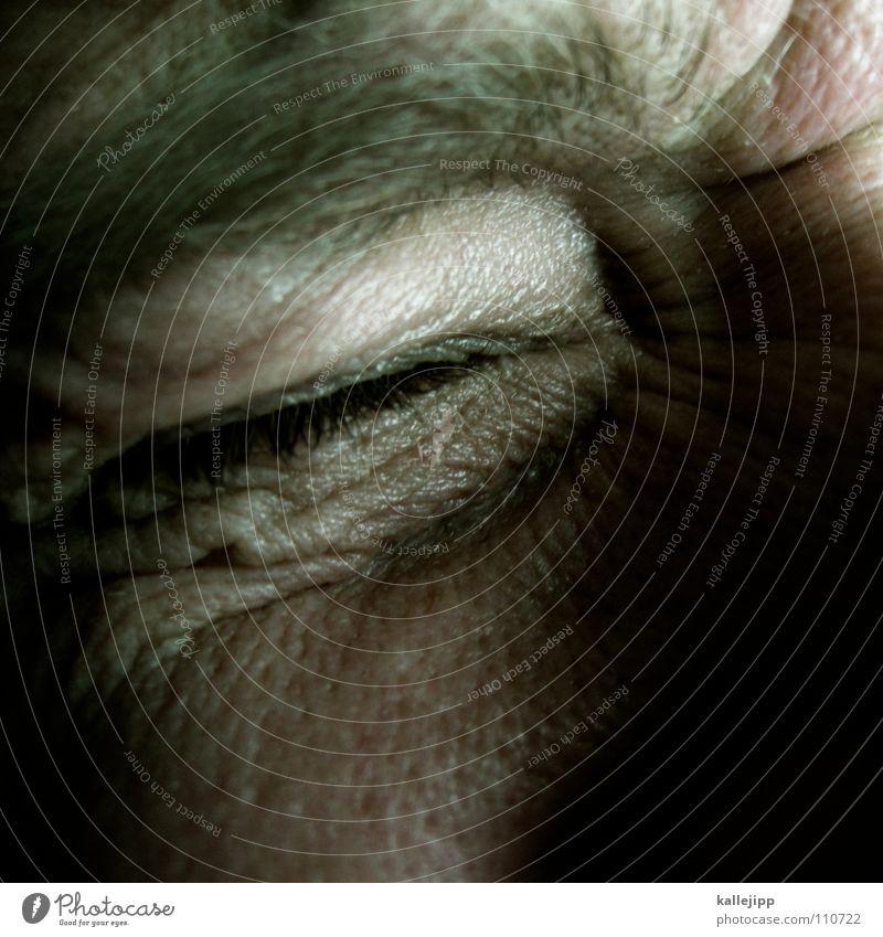 "apple ""z"" Backward Control device Error False Pore Human being Eyelash Eyebrow Tramp Loser Grief Distress Emotions apple z comand oh no shit happens wrong error"