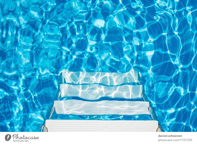 Should I go in? Lifestyle Harmonious Well-being Contentment Relaxation Swimming & Bathing Vacation & Travel Summer Summer vacation Swimming pool
