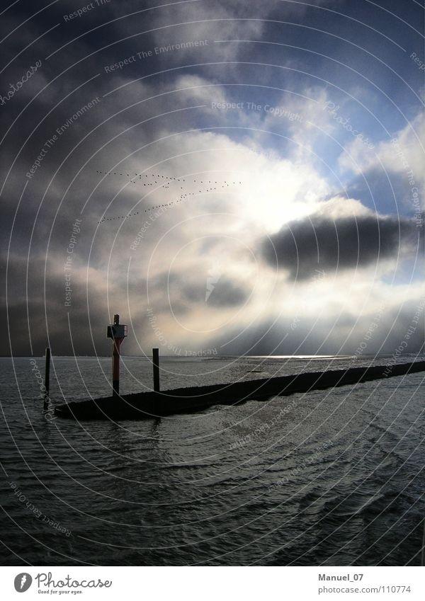 Sun Ocean Vacation & Travel Lamp Happy Lake Watercraft Moody Bird Waves Coast Germany Free Hope Island Harbour