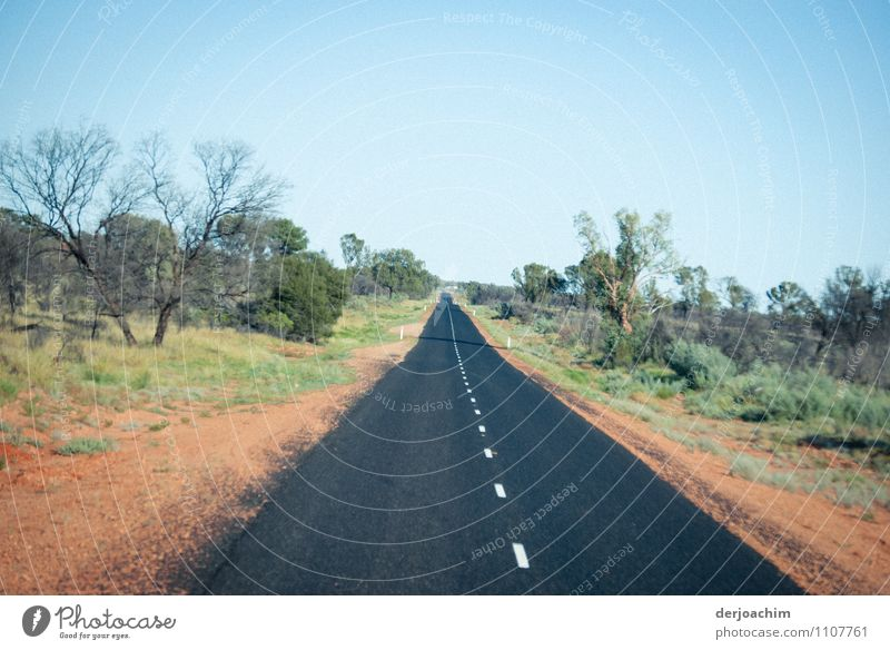 A straight tarred road in the outback, 39 degrees, with bushes and trees to the left and right. Northern Territory. Australia to the west Joy Relaxation Trip