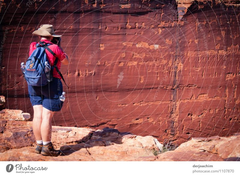 look out Joy Calm Trip Feminine Female senior Woman 1 Human being 45 - 60 years Adults Nature Earth Summer Beautiful weather Canyon Northern Territory Australia