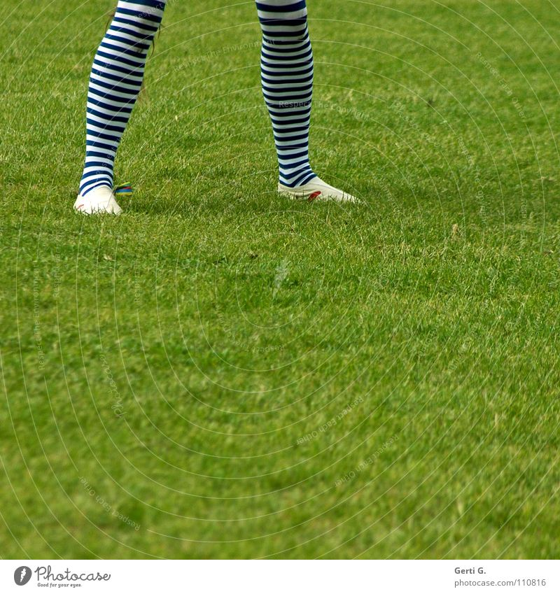 Human being Green Meadow Grass Movement Legs Going Walking Clothing Lawn Carnival Stockings Tights Striped Clown Pole