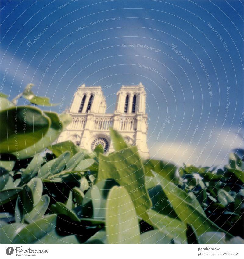 Sky Green Clouds Architecture Paris France Gothic period Cathedral House of worship Notre Dame Ile de la Cité