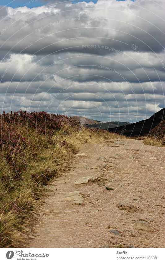 Sky Nature Vacation & Travel Summer Landscape Calm Clouds Lanes & trails Moody Hiking Footpath Hill Near Summer vacation Scotland Great Britain