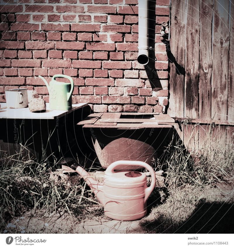 Waiting for water Grass Garden Watering can Eaves Drainpipe Brick wall Wooden gate Simple Retro Calm Idyll Flashy Sepia colour Warmth Rain gutter Drought Dry
