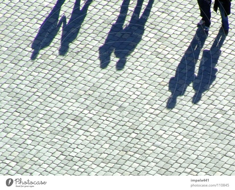 Black Group Stone Couple Legs Going Walking Places In pairs Communicate To go for a walk Dresden Sidewalk Human being Cobblestones Pedestrian