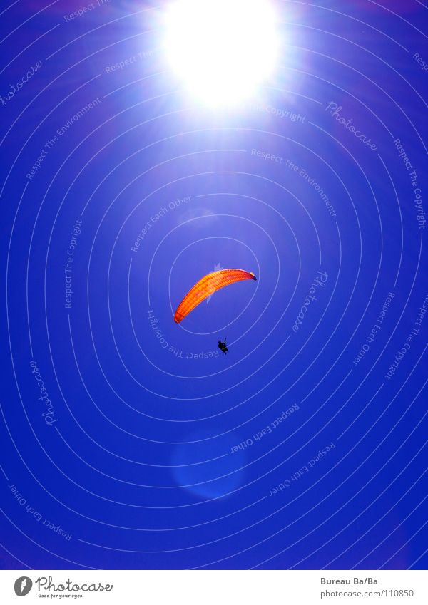 Towards the sun... Sunbeam Playing Freedom Sports Flying Blue White Paraglider Orange