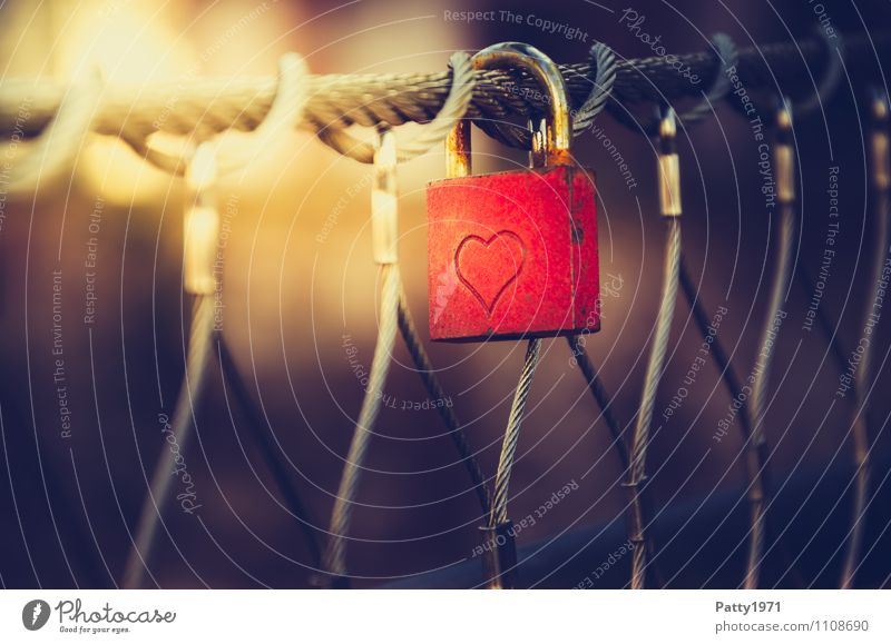 lock of love Lifestyle Bridge Love padlock Padlock Display of affection Hang Red Sympathy Friendship Together Loyalty Romance Rust Subdued colour Exterior shot
