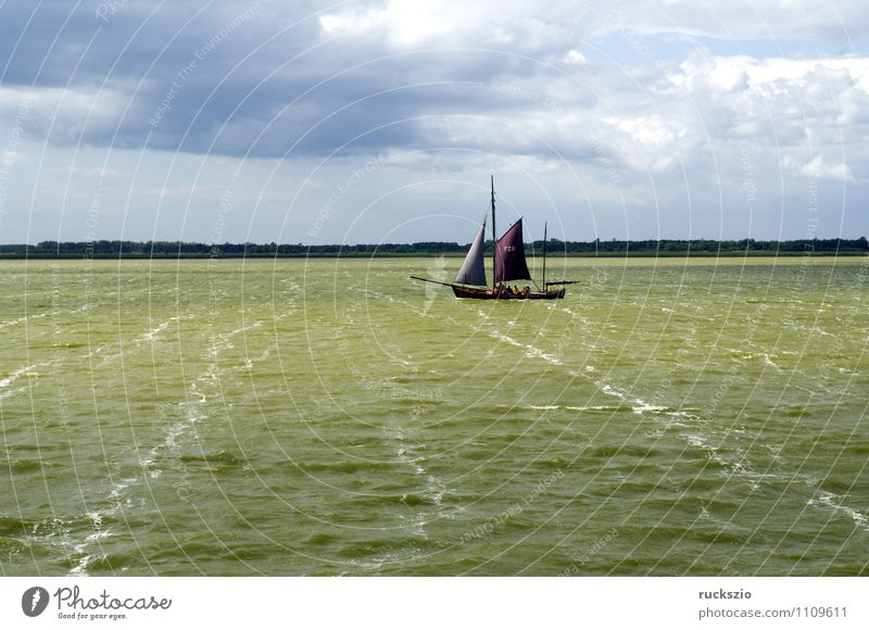 Zeesboat, Saaler Bodden, Landscape Beach Ocean Waves Water Sky Coast Baltic Sea Lake Sailboat Sailing ship Watercraft Swimming & Bathing Sports