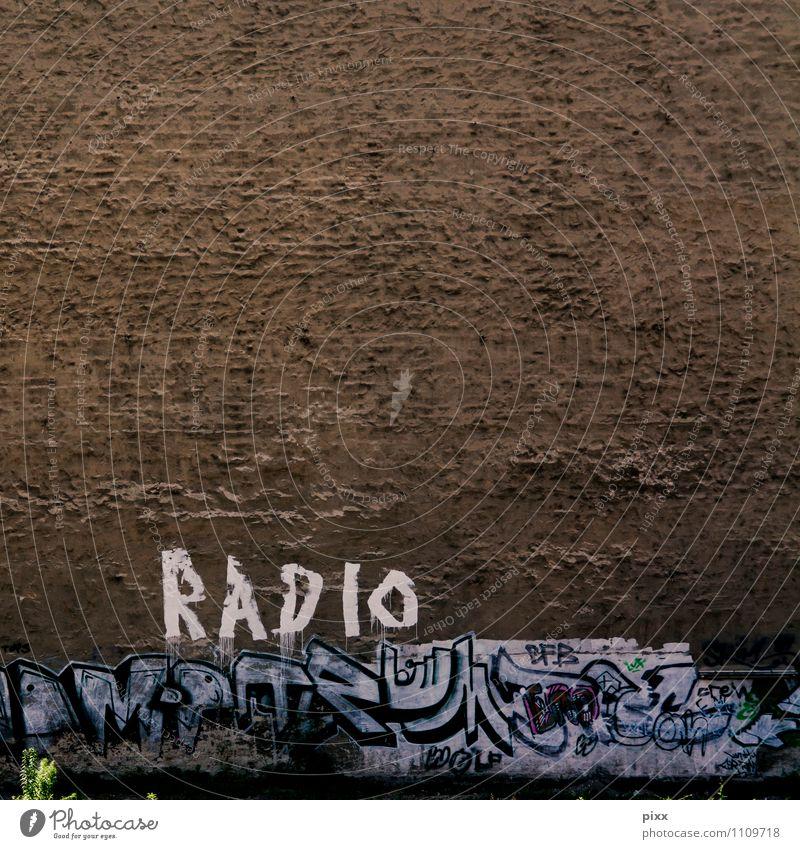 BerlinRadio Joy Technology Work of art Radio (broadcasting) Radio (device) Plant Foliage plant Deserted Wall (barrier) Wall (building) Stone Concrete Sign