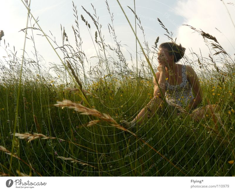Woman Sky Flower Green Summer Calm Far-off places Relaxation Meadow Grass Spring Contentment Field Sleep Peace Stalk