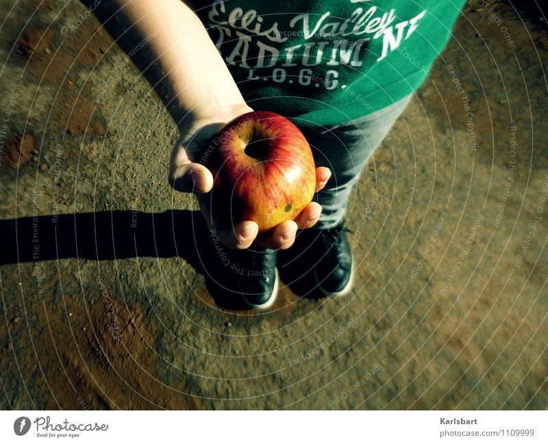 Human being Child Youth (Young adults) Hand Eating Boy (child) Healthy Lifestyle Food Masculine 13 - 18 years Infancy Footwear Nutrition Study To hold on
