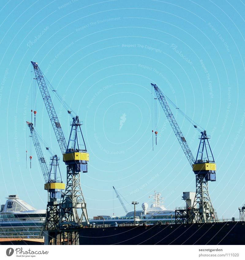 the three from dock II Dock Watercraft Town Brilliant Crane Work and employment Working man Physics Autumn Waves Steel Panorama (View) Machinery Consign Yellow